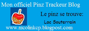 Nico Link Pinz Trackeur