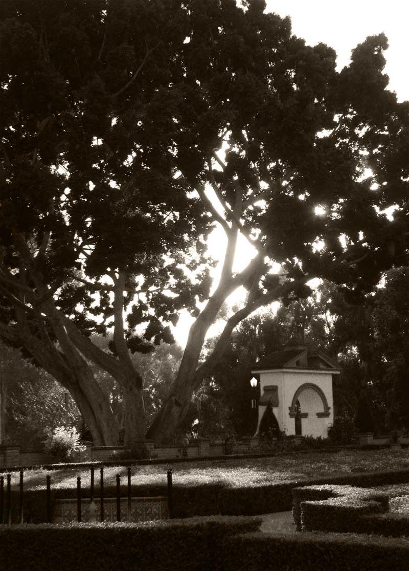 alcazar garden; click for previous post