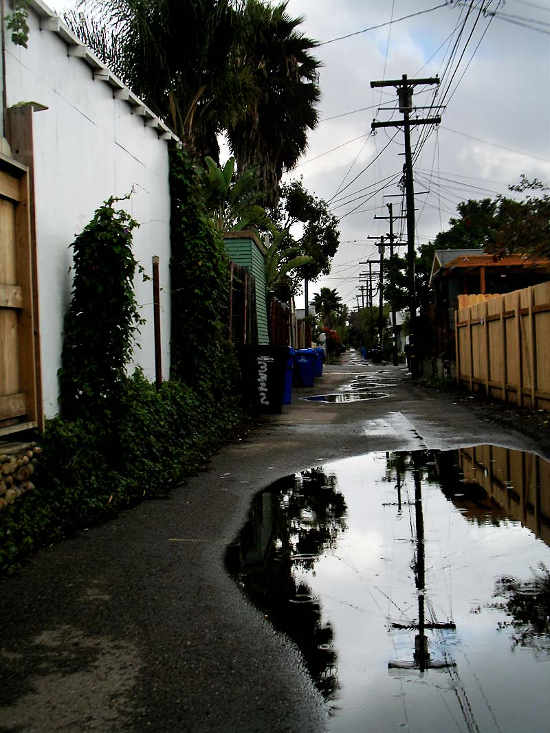 Puddles and power poles; click for previous post
