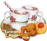 Karácsonyi blogger