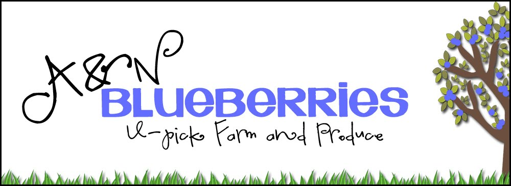 A & N Blueberry Farm