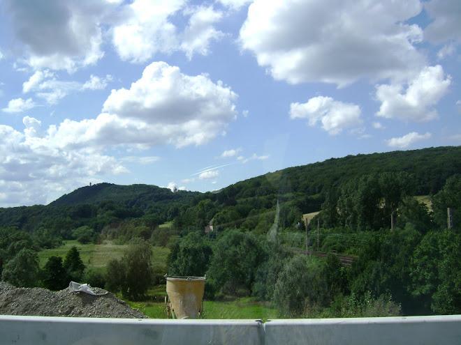 ปลูกต้นองุ่น บนภูเขา ประเทศเยอรมันนี
