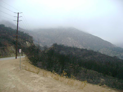Malibu Canyon Road