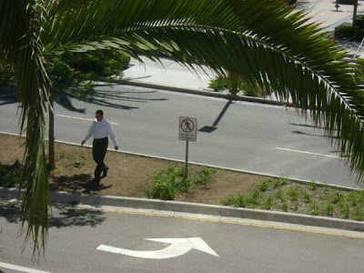 Man Disregarding Sign