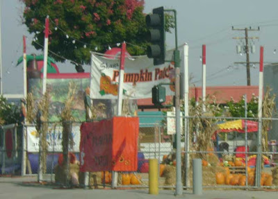 A Santa Monica Halloween