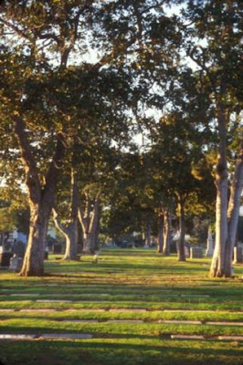 Woodlawn Cemetery - Santa Monica - Pt. 5