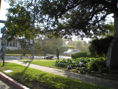 Morning Mowing - West L.A.