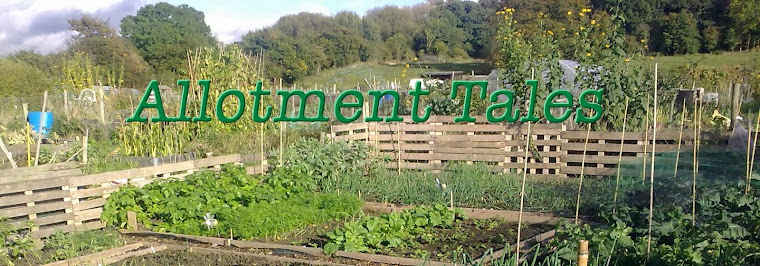 Allotment Tales