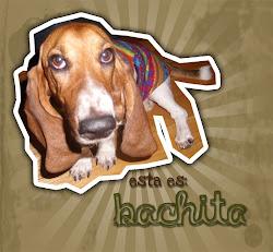 Bachita