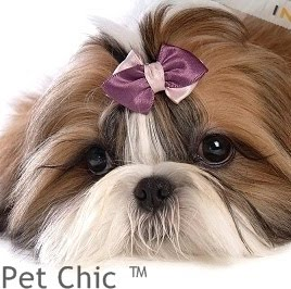 Pet Chic™