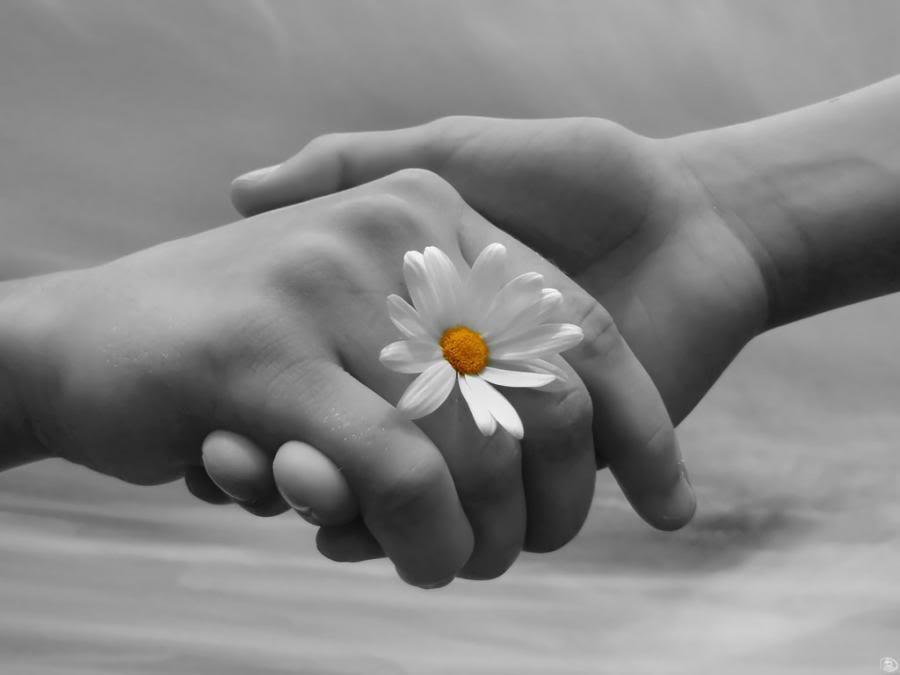 you take my hand: