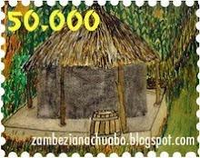 Zambeziana - um blog de sucesso!