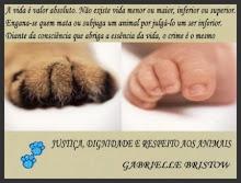 RESPEITE A VIDA! RESPEITE OS ANIMAIS!