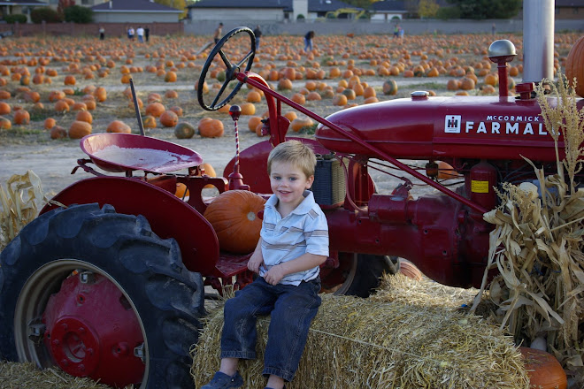 Ethan at the Pumkin Patch