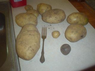 [peaches+potatoes+045.JPE]