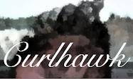 Welcome to Curlhawk.com!