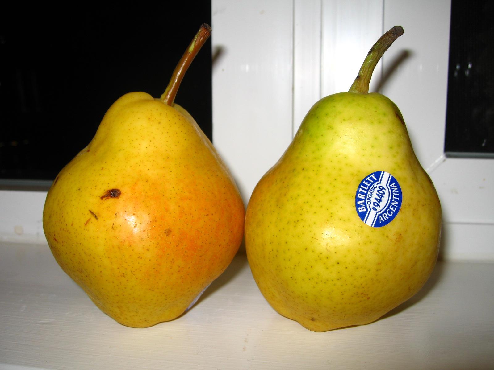 [Pear]