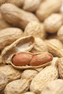 Ais kacang | Kacang soya | Roti Kacang Merah | Bubur Kacang Hijau | Kacang botol | www.kekacang.com | kekacang | NutriTeen | Kisah Jack dan Pokok Kekacang | Koleksi PETUA Tradisional, tips, information of MALAYSIA