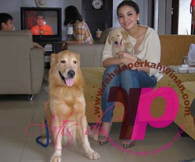 Gambar Manohara Odelia Pinot Pegang Anjing | Gambar Manohara Odelia Pinot memeluk Anjing | Situs Berita, Artikel Menarik , Hiburan dan Foto Artis dan Selebritis INDONESIA