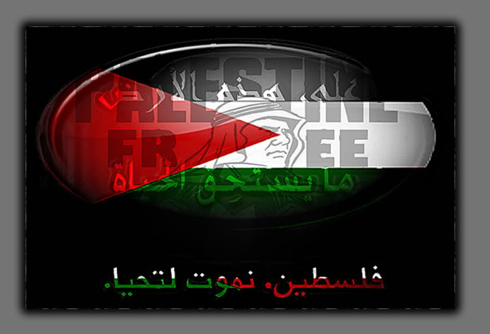 Palestine,tomorrow will be free~~