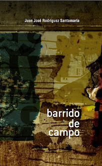 T-23: BARRIDO DE CAMPO