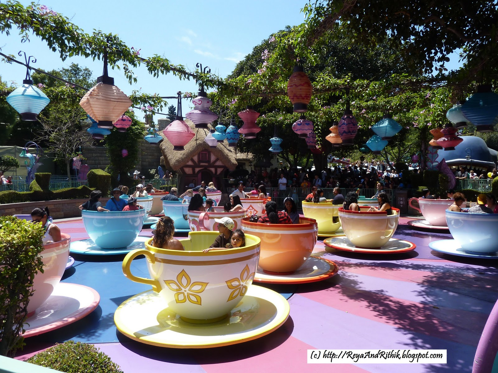 mad tea party - photo #27