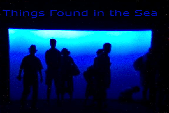 Things Found in the Sea