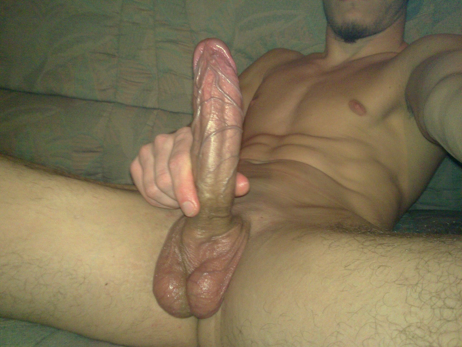 Huge Venous Cock