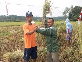Markuwat, Kordinator MSP Kab.Garut