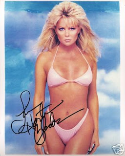 lisa hartman is an actress she made her first big splash in television