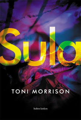 a summary of sula by toni morrison Our reading guide for sula by toni morrison includes a book club discussion guide, book review, plot summary-synopsis and author bio.