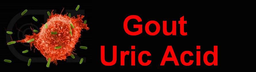 Gout Uric Acid