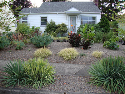 Site Blogspot  Landscaping  Yard on Danger Garden  Then And Now  The Front Yard