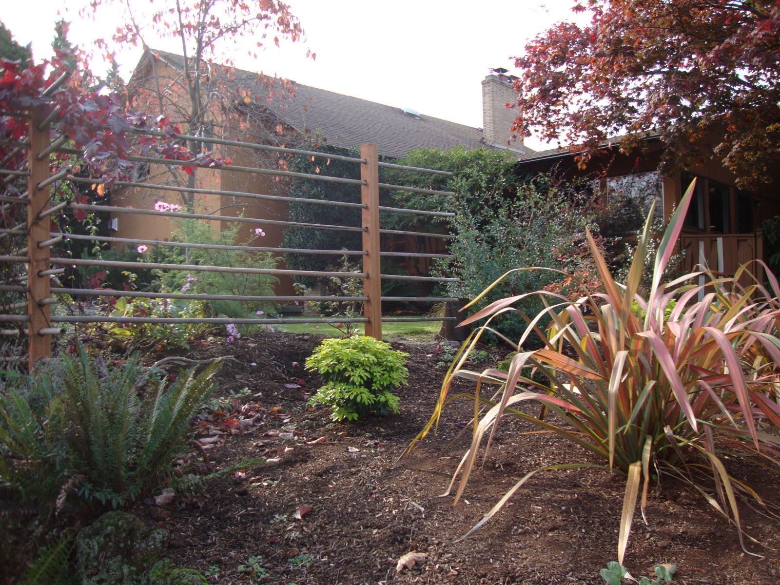 danger garden a fence that doubles as a grape arbor