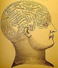 Mind Study