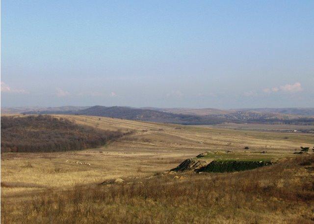 Dealurile inconjuratoare Rogovei