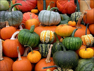 pumpkinfest in port elgin