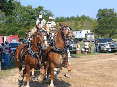 ontario fALL FAIRS