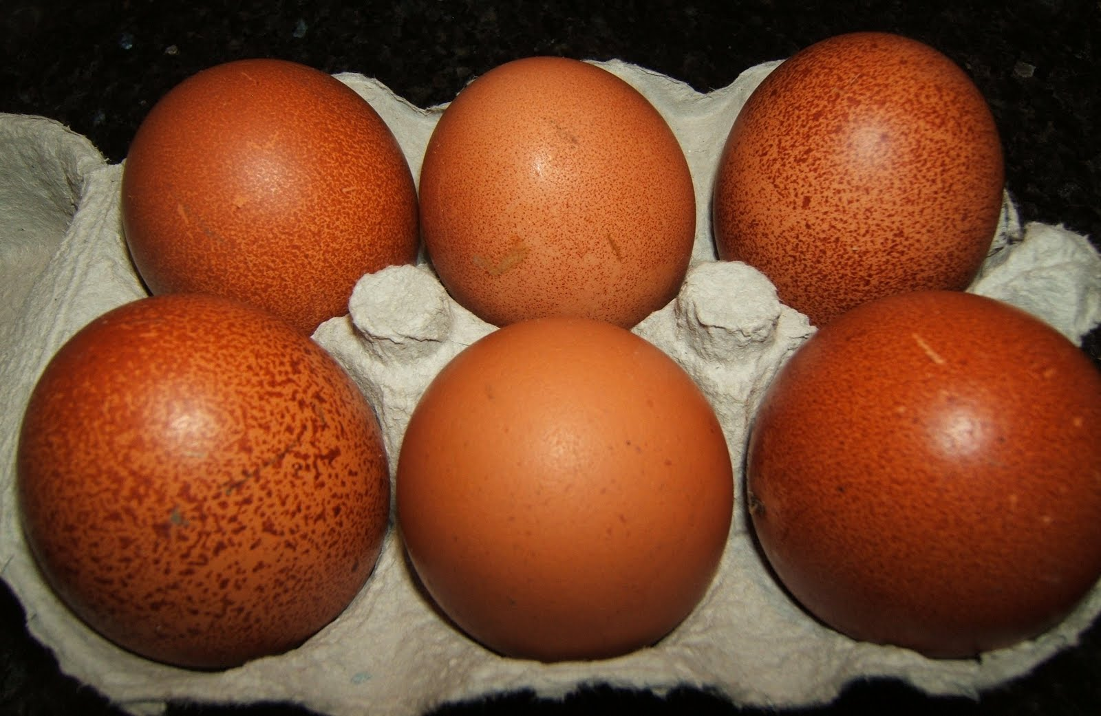 how to sell my eggs