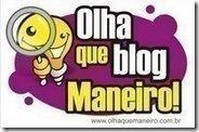 """Premio """"que blog maneiro!"""""""