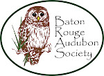 Sponsored by BR Audubon Society