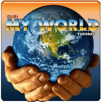 MY WORLD TUESDAY