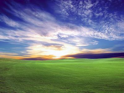 amazing-nature