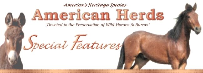 American Herds Special Features