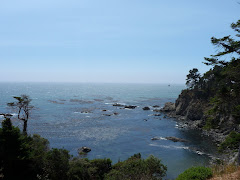 California coast - south of Redwood Nat'l Park