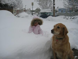 Our first snowstorm - Savannah and Sackee