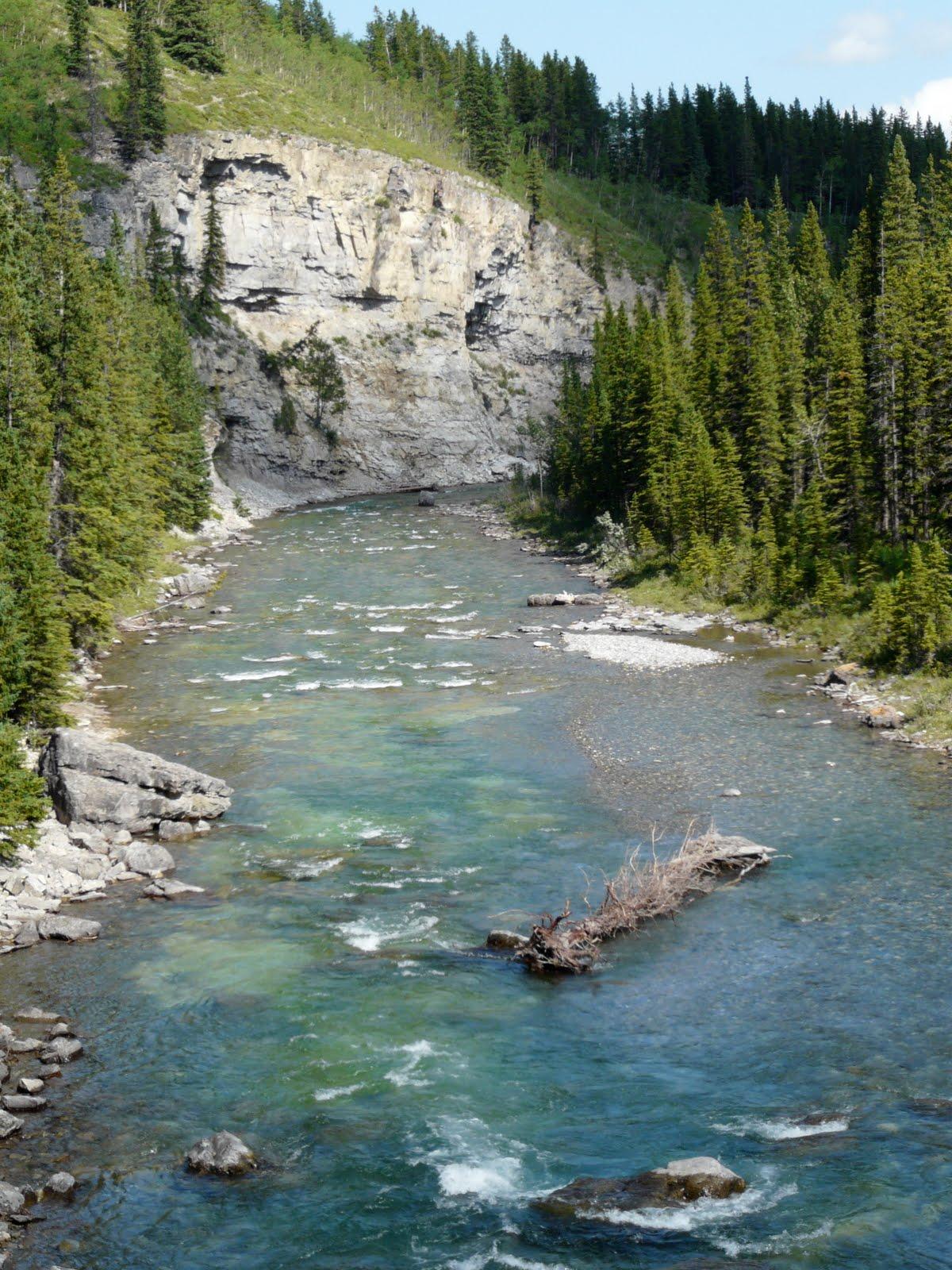 Frostbite And Sunburn Scenic Sunday Elbow Falls Near Calgary Alberta