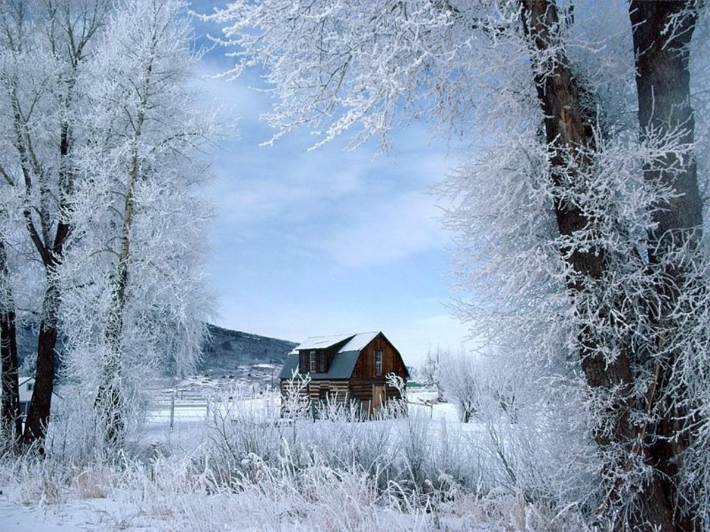 Magija različitih godišnjih doba - Page 2 Zima+1