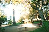 Plaza Patrimonial