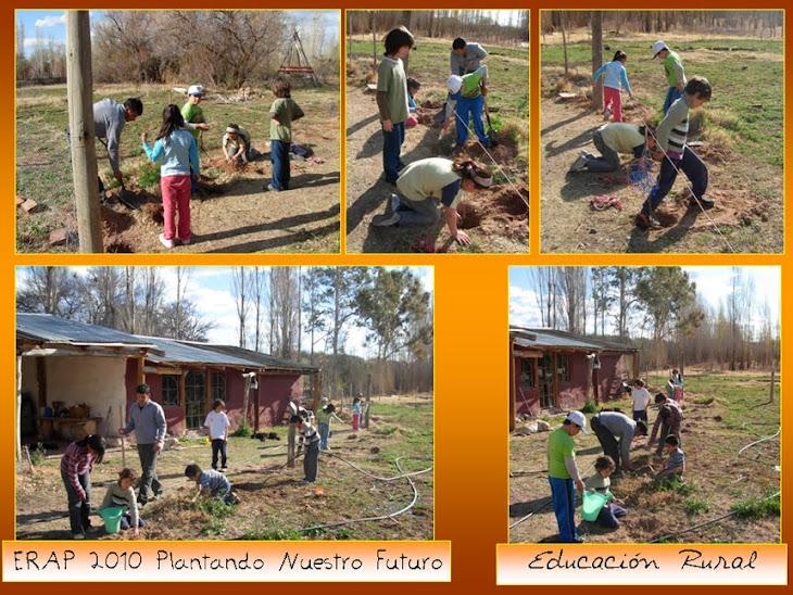 Plantamos arboles frutales para la huerta escolar